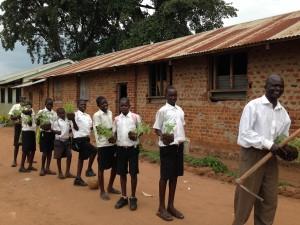 School Gardens Scheme at Anaka P7