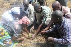 school committee planting 2