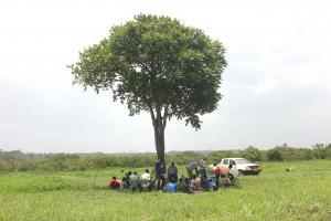 Famers meeting around the big tree- Tedi Primary School